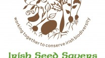 Irish seed logo
