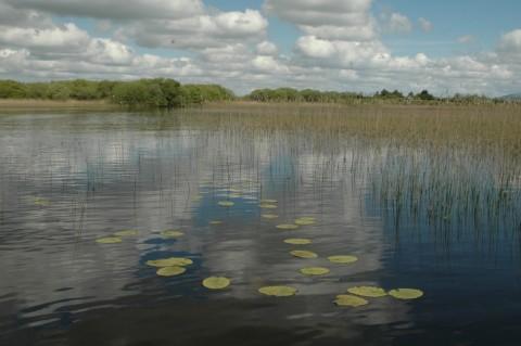 Lough Naback