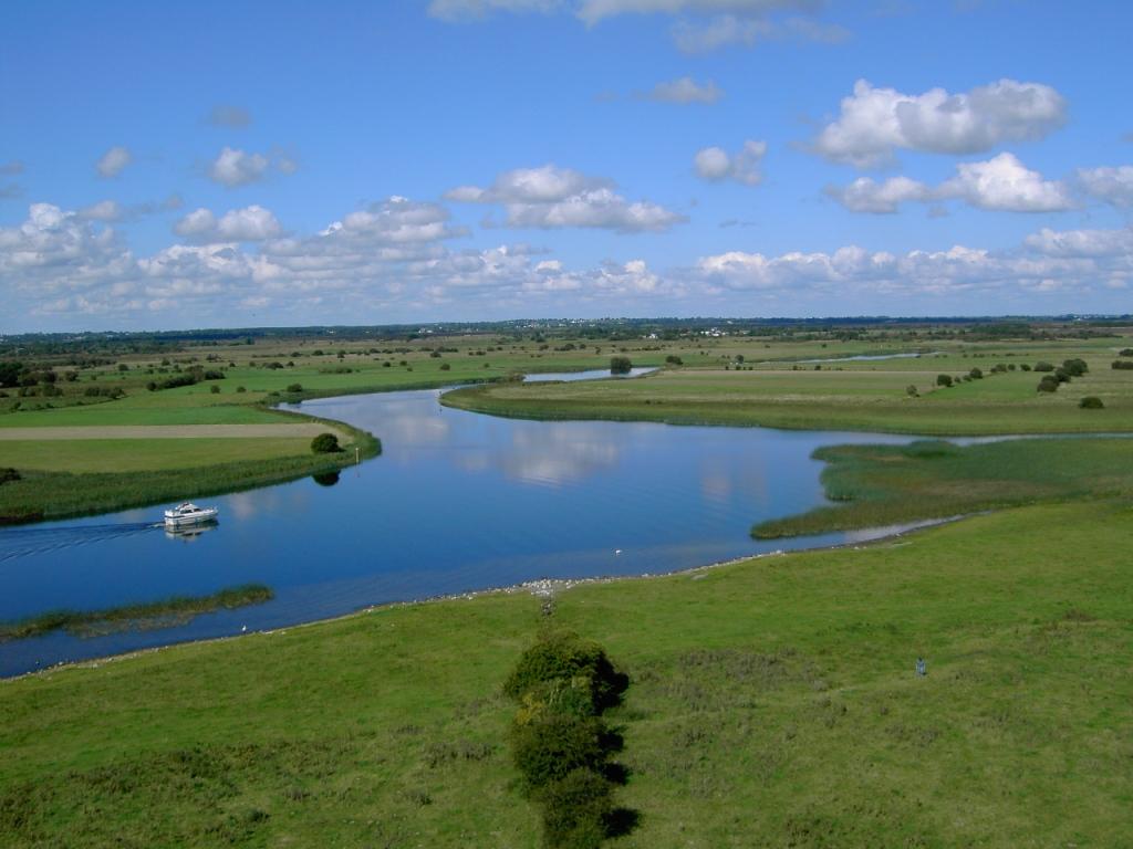 Shannon Fluss